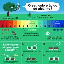 Figura 3: Escala de pH do solo