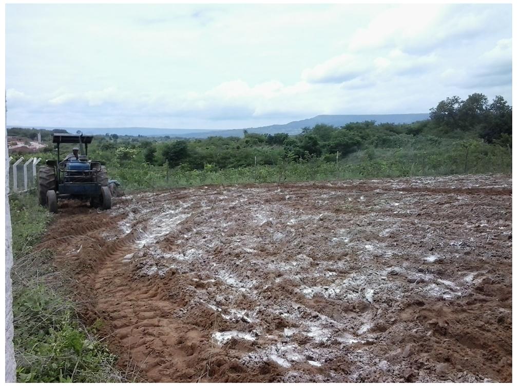 Figura 4: Correção da acidez do solo pela técnica de calagem