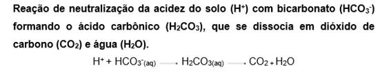 Reação de neutralização da acidez do solo com bicarbonato